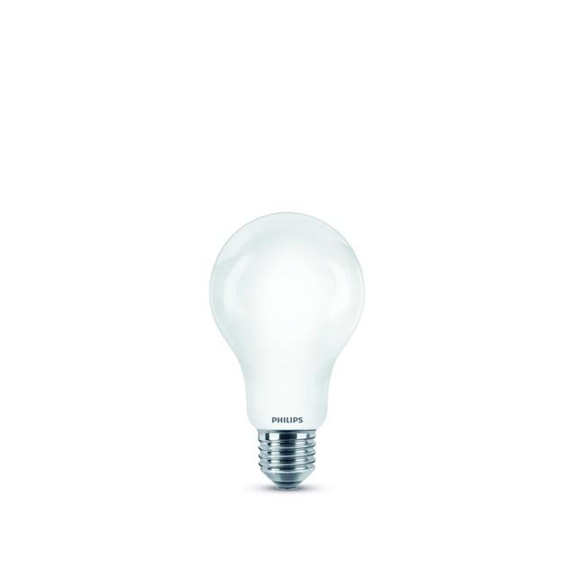 LED GOCCIA IN VETRO 100W 11