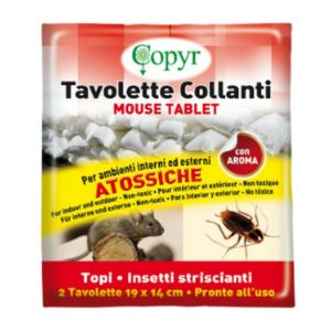 PZ 2 IN BUSTA MOUSE TABLET CM 20X17 TAVOLETTE COLLANTI